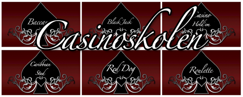 Casinoskolen-banner