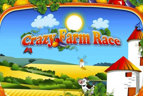 Crazy Farm Race automat