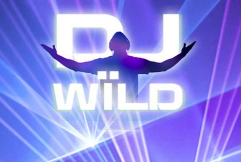 DJ Wild online slot spilleautomat