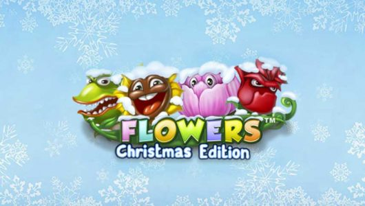 Flowers Christmas Edition automat