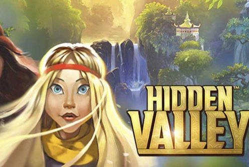 hidden valley automat