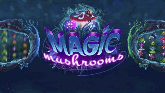 Magic Mushrooms automat