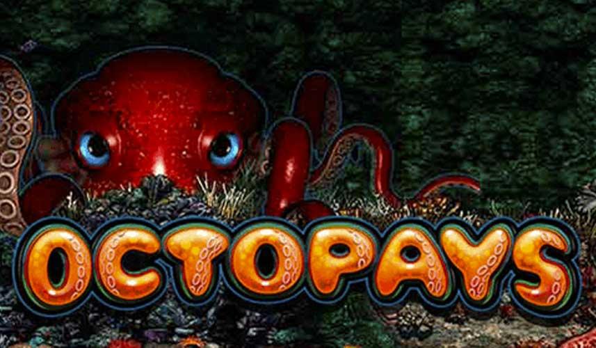 Octopays automat
