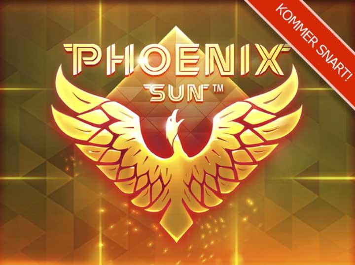 phoenix-sun-promo