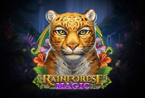 Rainforest magic logo