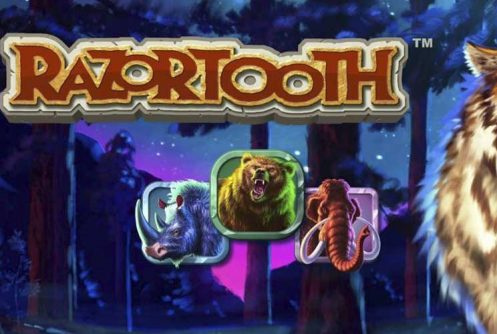 Razortooth automat