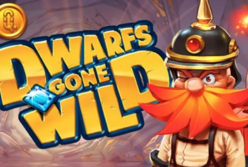 Dwarfs Gone Wild - automat