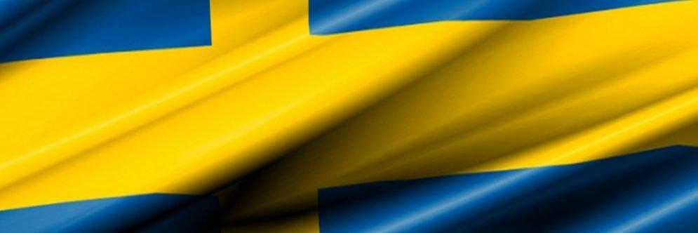 Spelinspektionen - flag