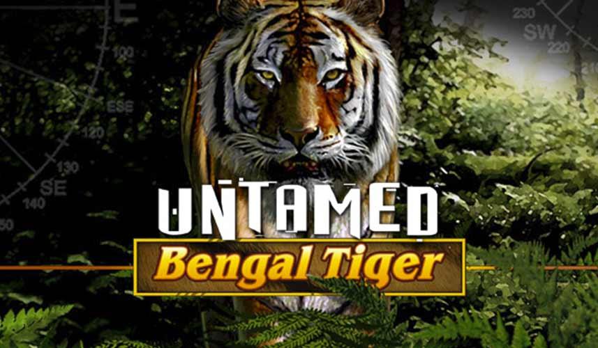 Untamed Bengal Tiger automat