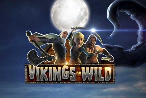 Vikings Go Wild automat