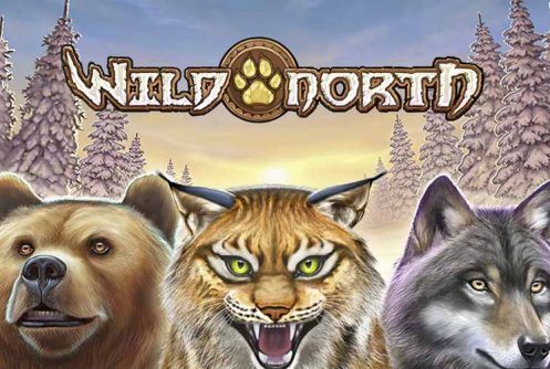 Wild North automat