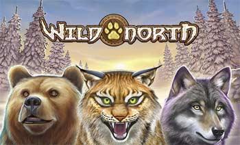 Wild-North