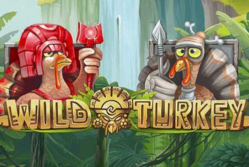 Wild Turkey automat