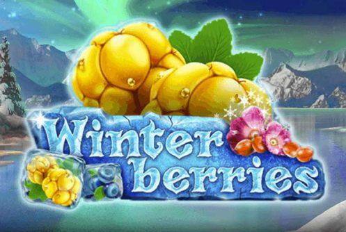 Winterberries automat