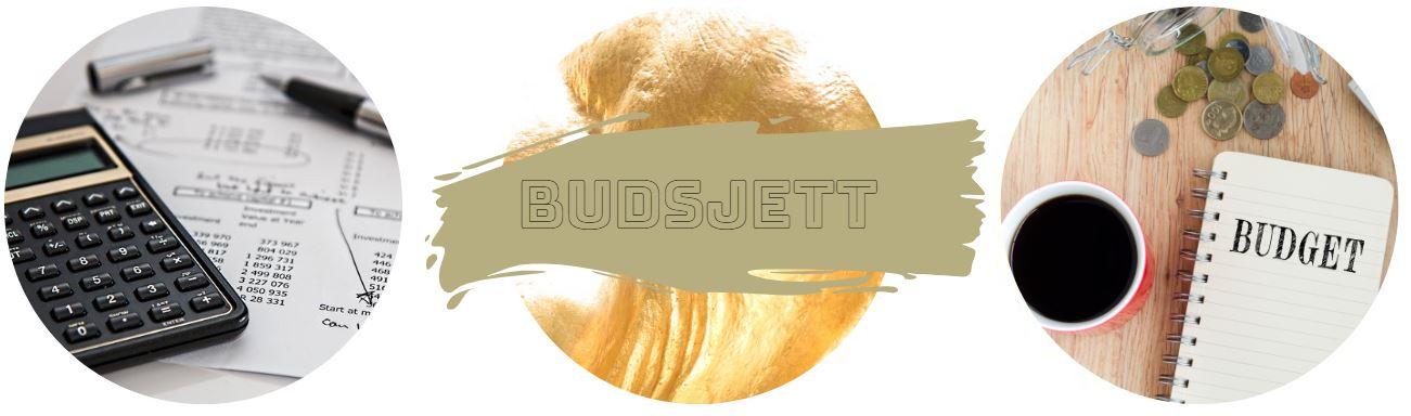 casinoskolen - budsjett banner