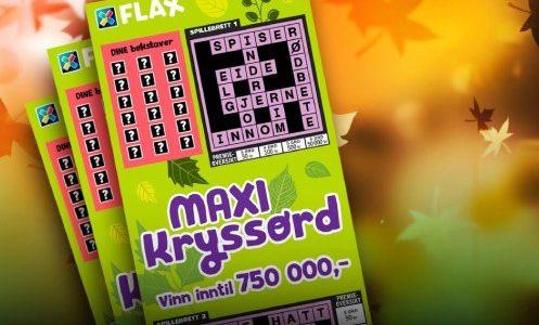 maxi kryssordflax