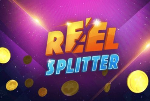 reel splitter.